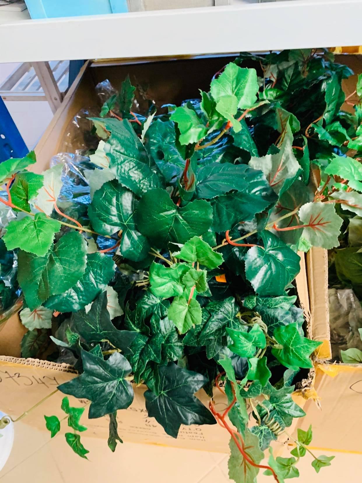 liście-dodatki-zielone-zamość